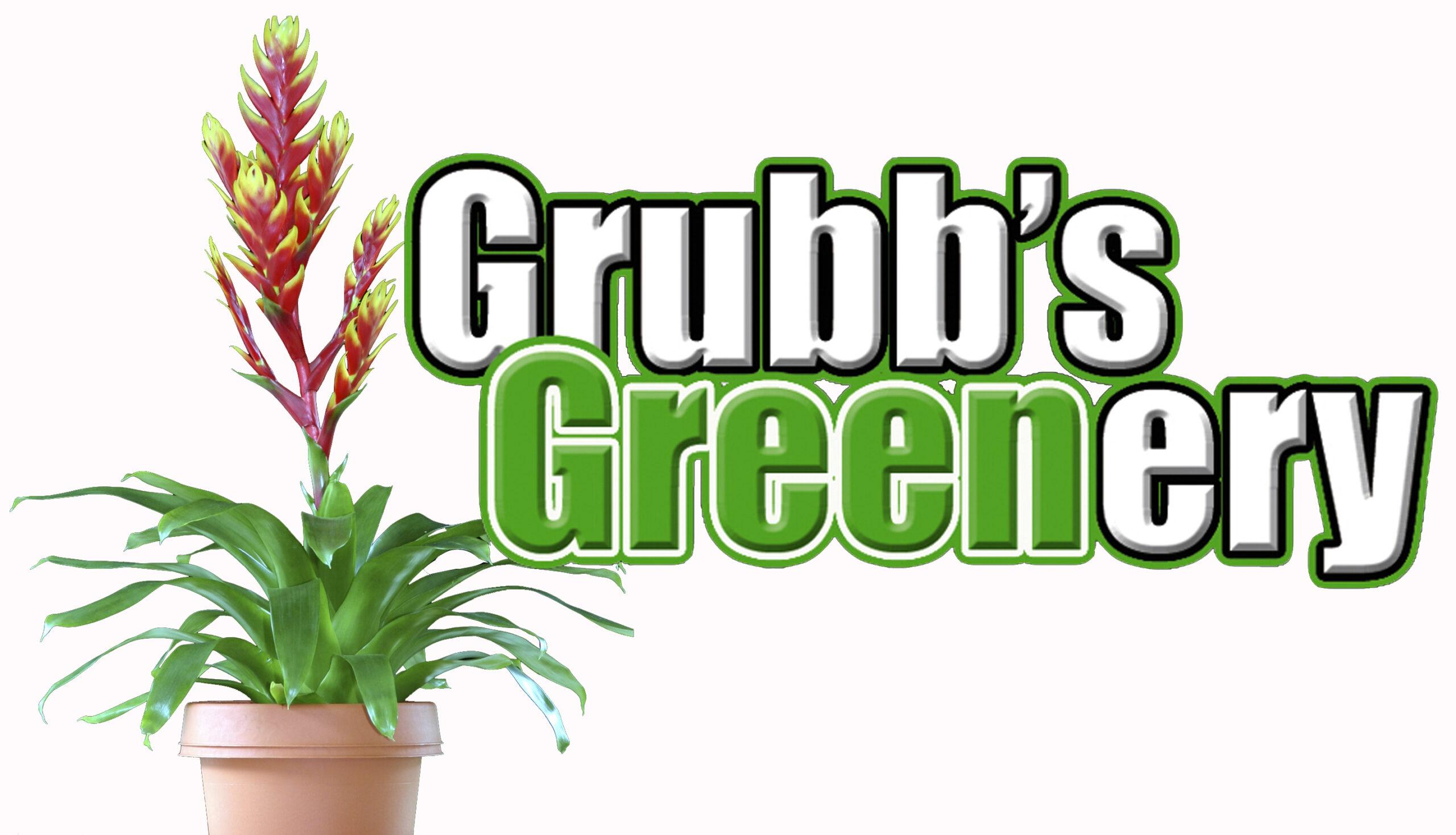 Grubb's Greenery Interior Plant Service